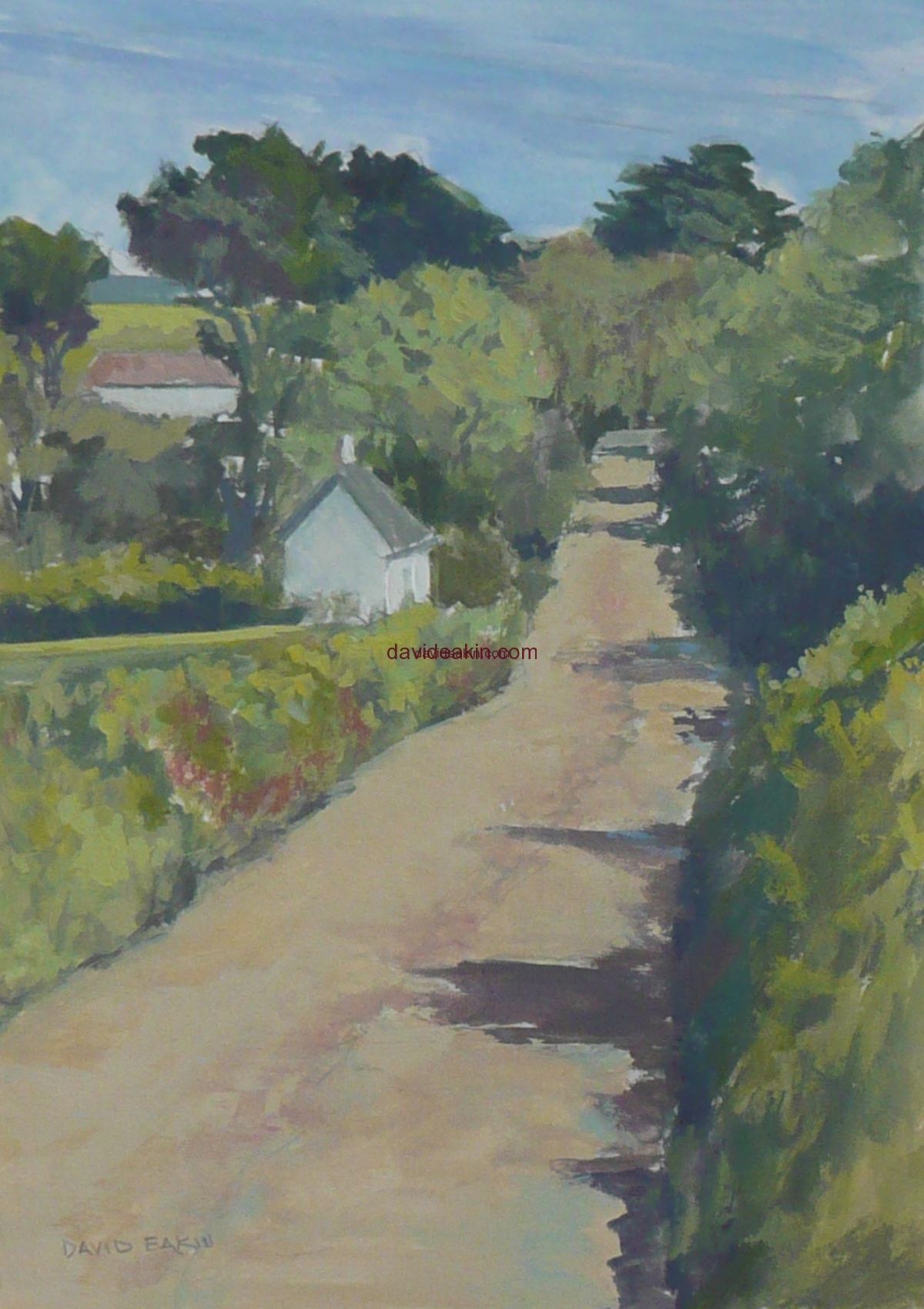 Isle of Sark Lanes