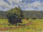 Pasture Tree II