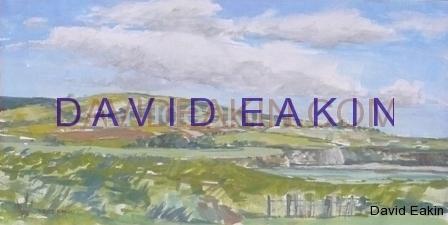 View from Dunnottar Castle - Scotland